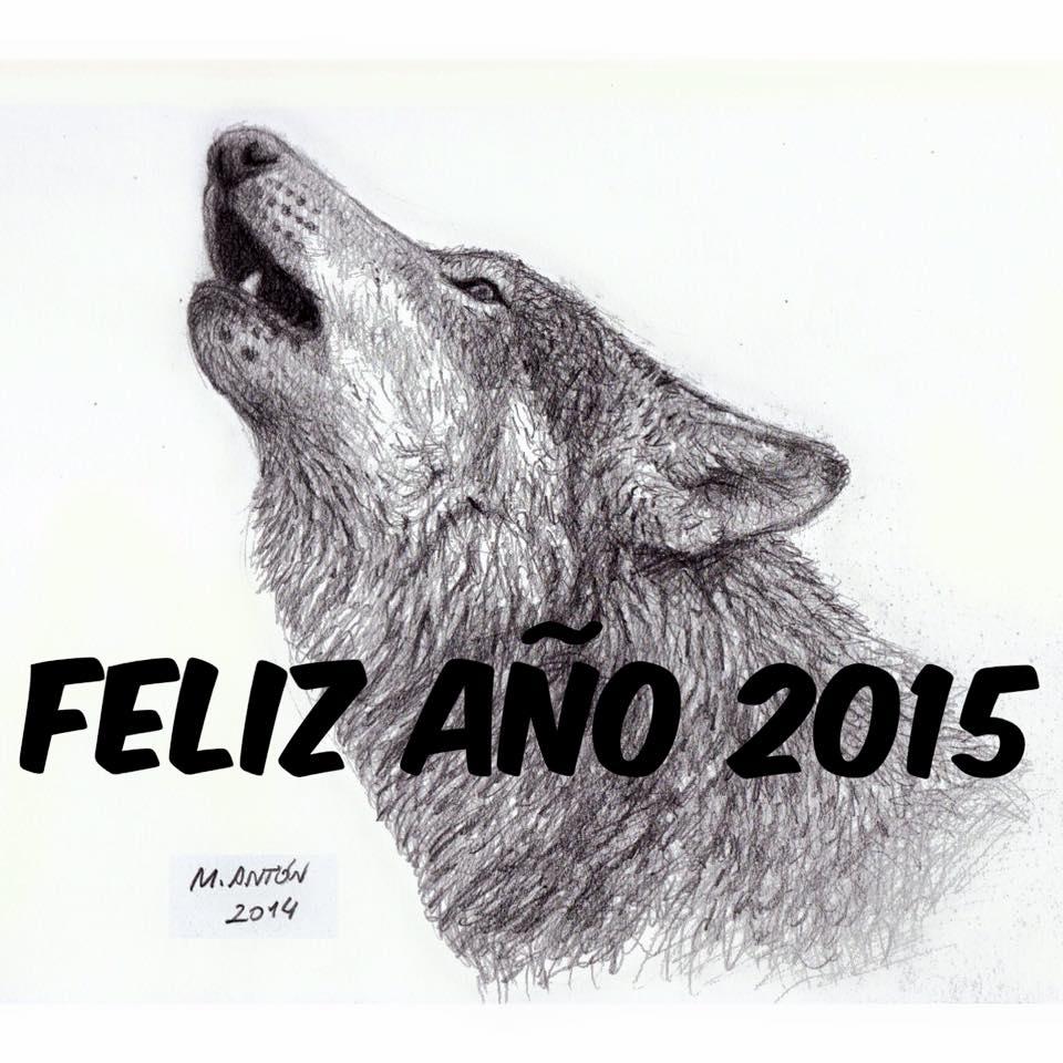 Ilustracion de lobo iberico de Mauricio Antón