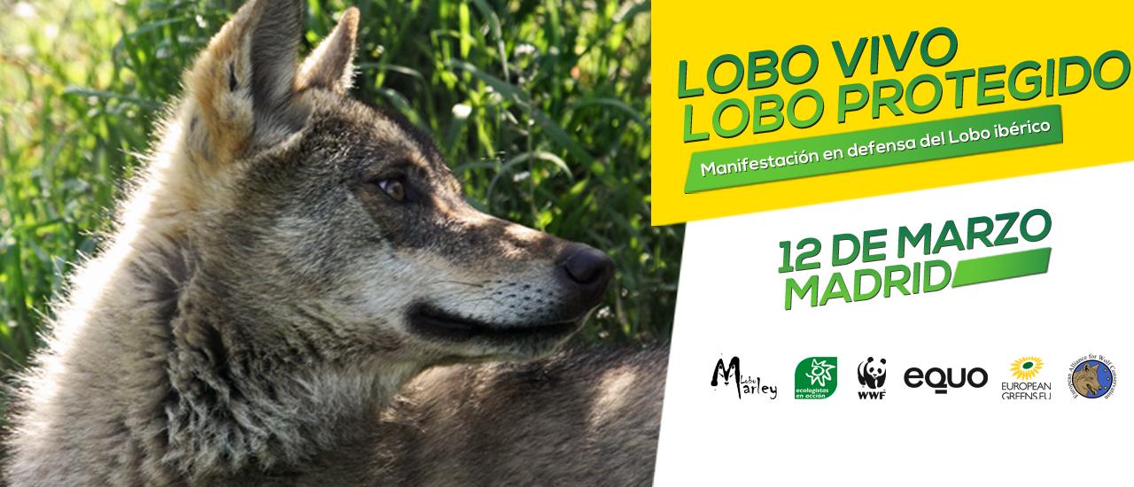 Manifestacion-en-defensa-del-lobo-iberico-2017-web